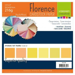 Lot de 24 Cardstock Unis – 6 Coloris – Nuance de Jaune
