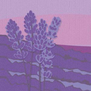 Lot de 24 Cardstock Unis – 6 Coloris – Nuance de Violet
