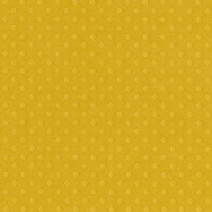 Cardstock Bazzill Honey
