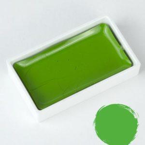 Godet Aquarelle Gansai Tambi May Green