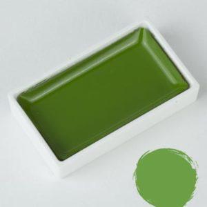 Godet Aquarelle Gansai Tambi Mid Green
