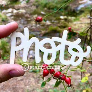 Mot en bois – photo – Stampam