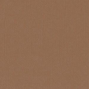 Cardstock Uni Lion texturé