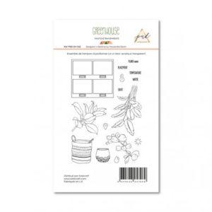 Tampons Transparent – PaperNova Design Green House