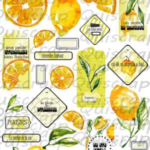 Planche de Dies-cut La Citronnade By Quiscrap