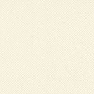 Cardstock Uni Texturé Cream Puff