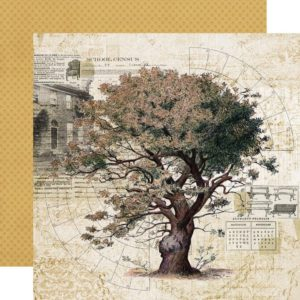 Papier Family Tree Collection Simple Vintage Ancestry Simple stories