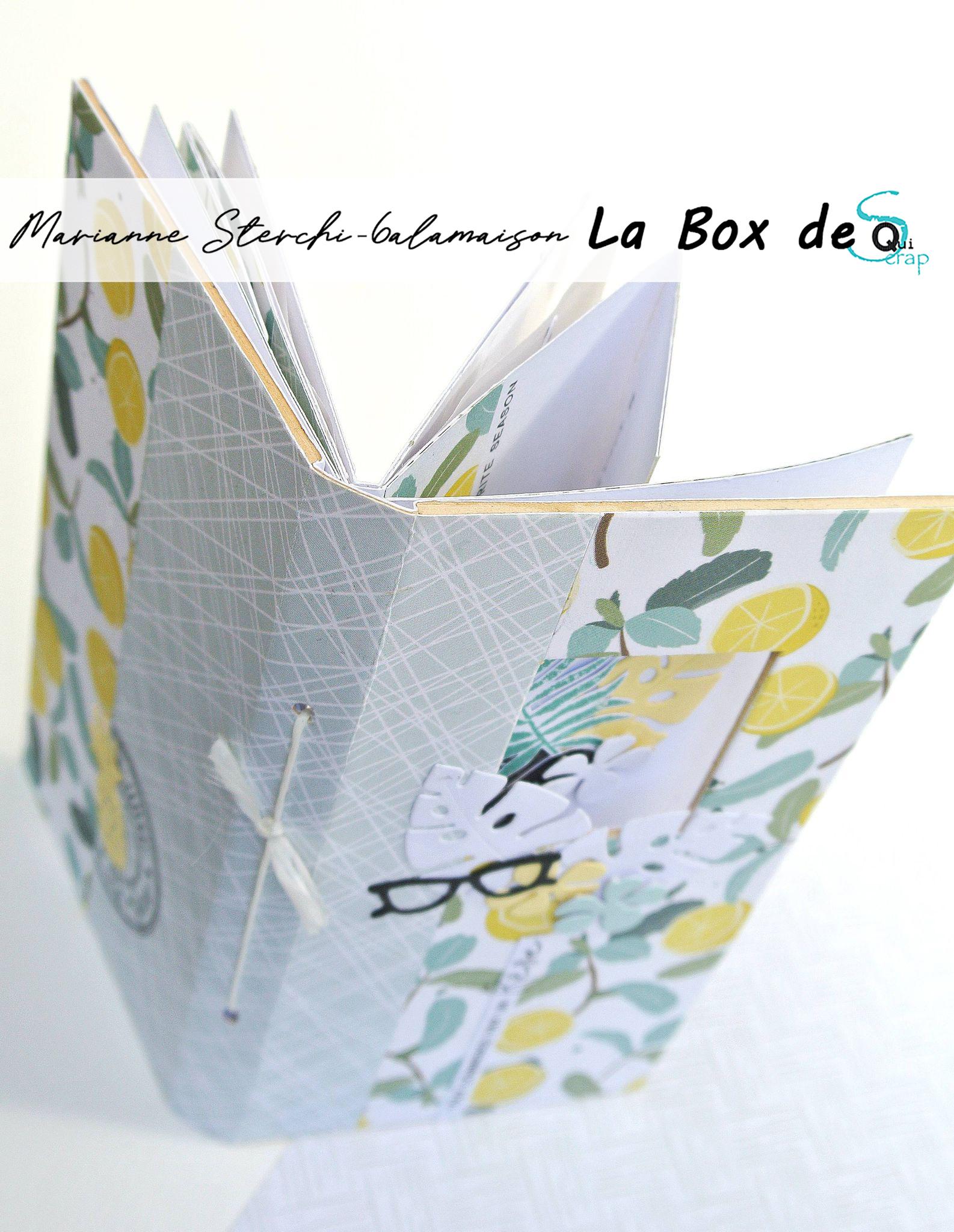 Tuto n°2 pour la Box d'Aout 2021 par Marianne Sterchi – 6alamaison: Le minialbum
